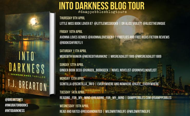 Into Darkness blog tour banner