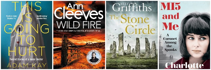 This is Going to Hurt, Wild Fire, The Stone Circle, MI5 and Me