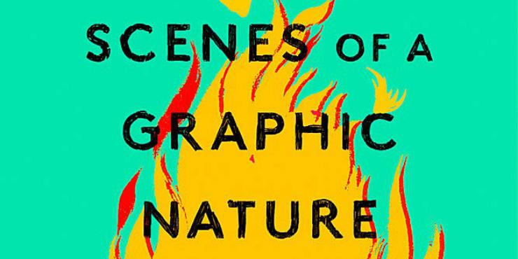 Review: Scenes of a Graphic Nature by Caroline O'Donoghue