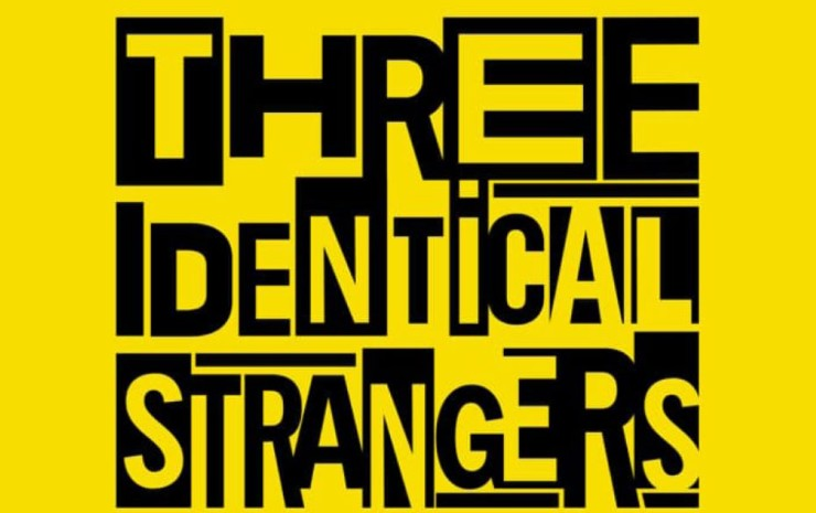 A few thoughts on Three Identical Strangers